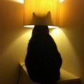 interesantna lampa