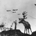 sob uhvaćen između dvije ratne vatre u Murmansku 1941.