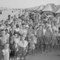 Dalmatinci u zbijegu, El Shatt