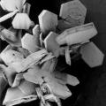 snježna pahulja pod mikroskopom